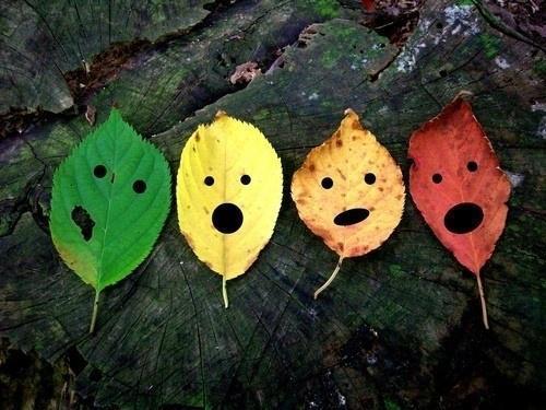 用落叶手绘的创意树叶作品图_圣德保陶瓷砖微