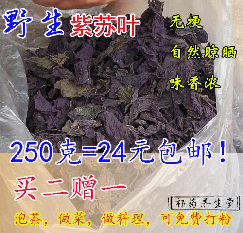 新货 野生紫苏叶 干苏叶 无梗味浓 无杂质 去腥味 解表散寒250g
