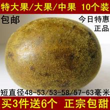 正宗罗汉果特大果大果中果10个装广西特产桂林永福茶正品