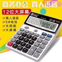 包邮 送电池会计计算器语音大按键多功能财务办公专用计算机大号