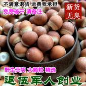 农家自产 大颗粒芡實 干货 500g 芡实 新鲜 包邮 退伍兵野生鸡头米