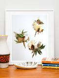 水彩画装饰画花卉植物现代简约小清新原创原作纯手绘水彩画