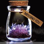 旦礼物DIY许愿精灵许愿晶灵自种水晶种植许愿瓶生长水晶 圣诞元