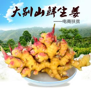 岳西小黄姜新鲜嫩生姜山区姜农自种生姜汁多味浓地区5斤包邮特价