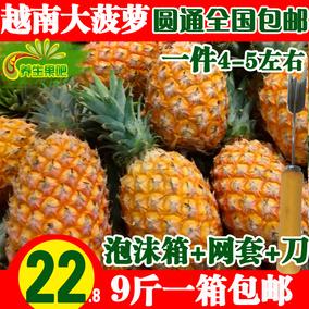 新鲜菠萝都乐大菠萝越南手撕菠萝海南水果除味22.9元9斤送刀包邮