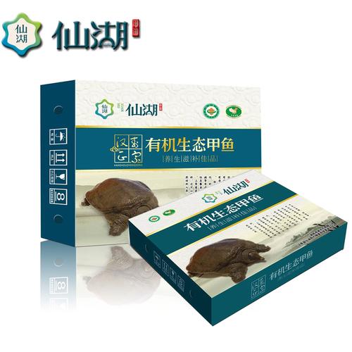 仙湖5年 3斤 生态汉寿甲鱼中华鳖活体水鱼鳖王八美食