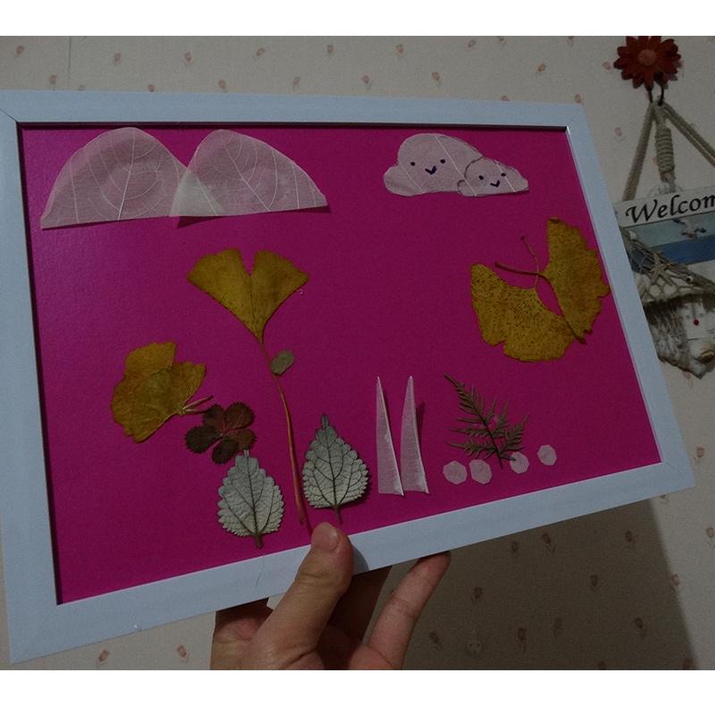 树叶贴画 手工diy 植物标本画标本画 老鼠 欢迎来图定做a4带相框