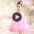 女童夏季绣花公主裙童装蓬蓬纱裙儿童连衣裙主持人演出服花童礼服