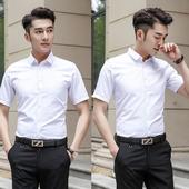 2件装///夏季白色衬衫男短袖衬衣工作修身职业寸衫工装称衫薄正装