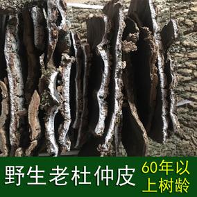 老杜仲皮 野生 強筋骨 泡酒煲湯料張家界非杜仲粉60年以上樹齡1斤