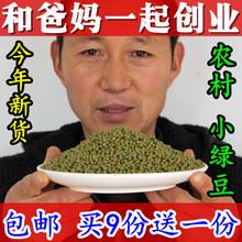 新鲜 绿豆 农家自产 小绿豆 笨绿豆 五谷杂粮 散装250g发豆芽煮汤