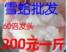 200一斤甜品店木瓜炖雪蛤 养殖雪蛤膏 包邮 雪蛤净油足干 餐饮专用