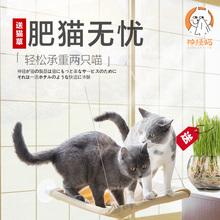 天天特价猫吊床吸盘式挂窝床猫窝猫咪吊床秋千猫垫子宠物用品夏天