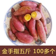 125个金手指地瓜 果能9月现挖新鲜番薯临安天目山小香薯5斤100