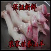 江浙沪皖 羊爪羊脚6斤 去毛羊蹄 包邮 卤煮烧烤带筋羊蹄 新鲜羊蹄