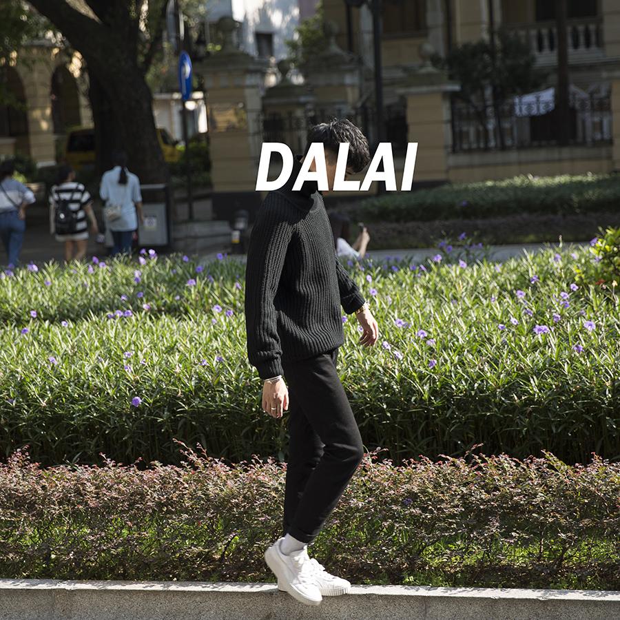 大赖自制 冬季男士高领毛衣男韩版青年休闲长袖纯色插肩袖毛衣男