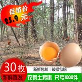 【天天特价】正宗农家土鸡蛋散养新鲜纯天然笨鸡蛋柴鸡蛋包邮30枚