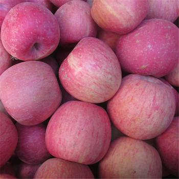 新鲜洛川苹果陕西红富士苹果脆甜