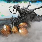 六珠桃花蚌珍珠蚌米型淡水珍珠开蚌直播现场开蚌可定制裸珠diy