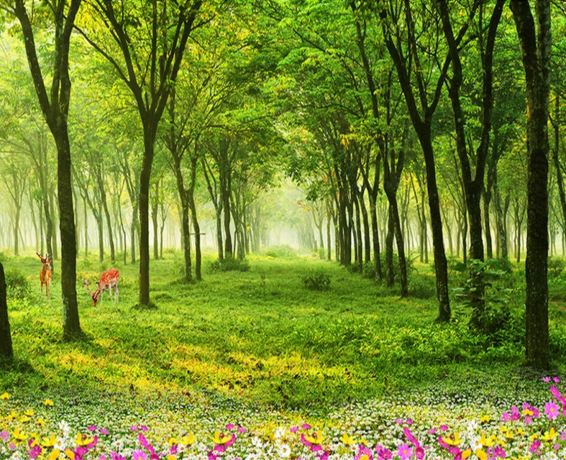 大自然森林风景壁纸3d绿色墙纸电视客厅背景墙无缝墙布树林壁画