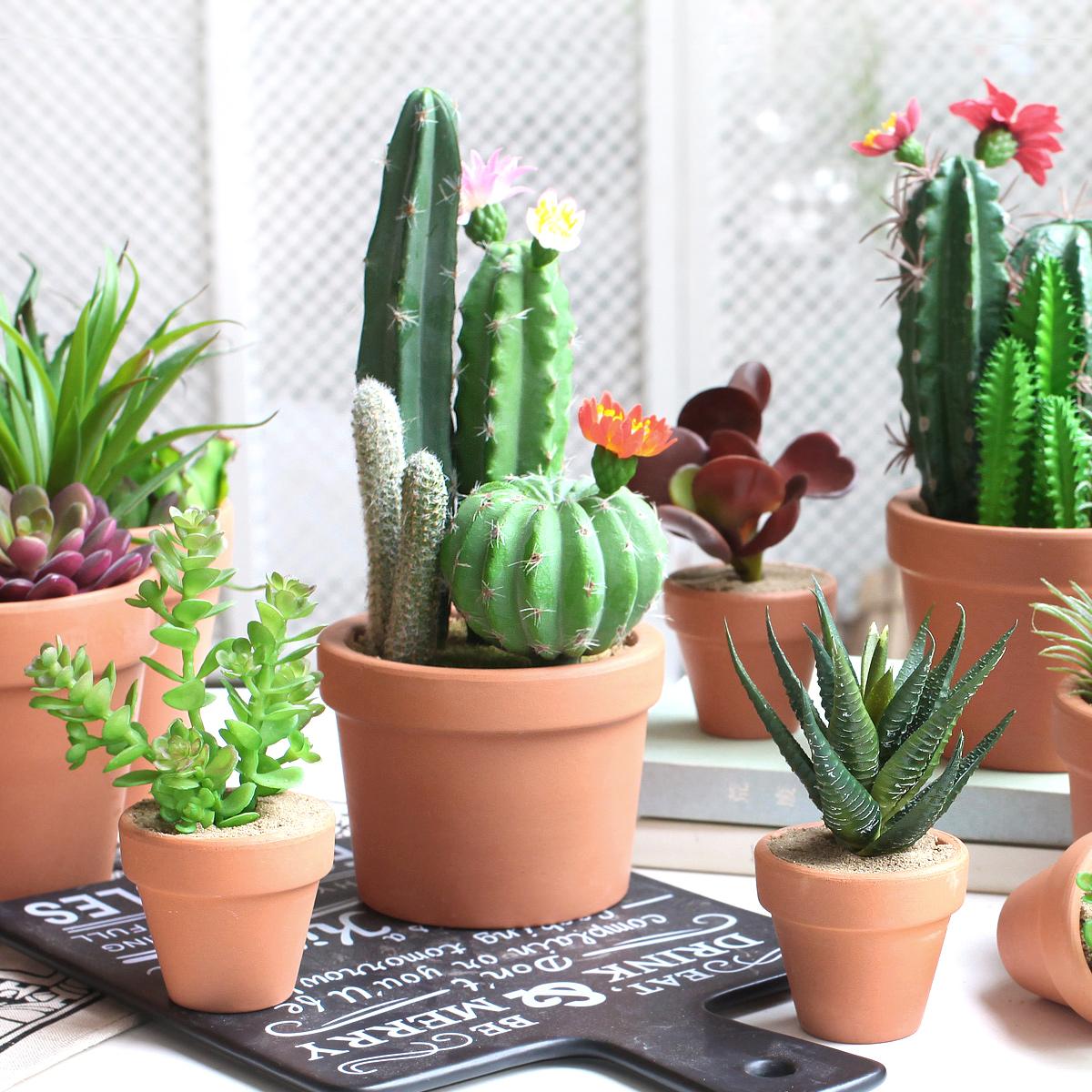 西西里 仿真绿色植物假多肉小盆栽 办公桌创意可爱绿植摆设装饰品