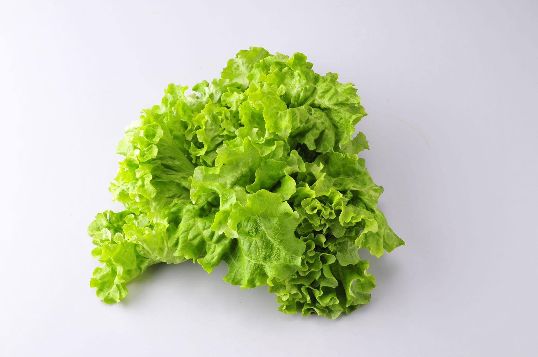 果菜窑 新鲜蔬菜 绿萝莎西餐配料 蔬菜沙拉 花叶生菜500g 4份包邮图片