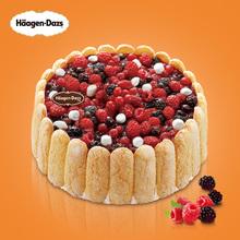 哈根达斯 蛋糕冰淇淋 夏洛特1.1千克 二维码专拍