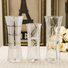 客厅花插花瓶 饰花器 百合富贵竹水培装 现代简约大号透明玻璃花瓶